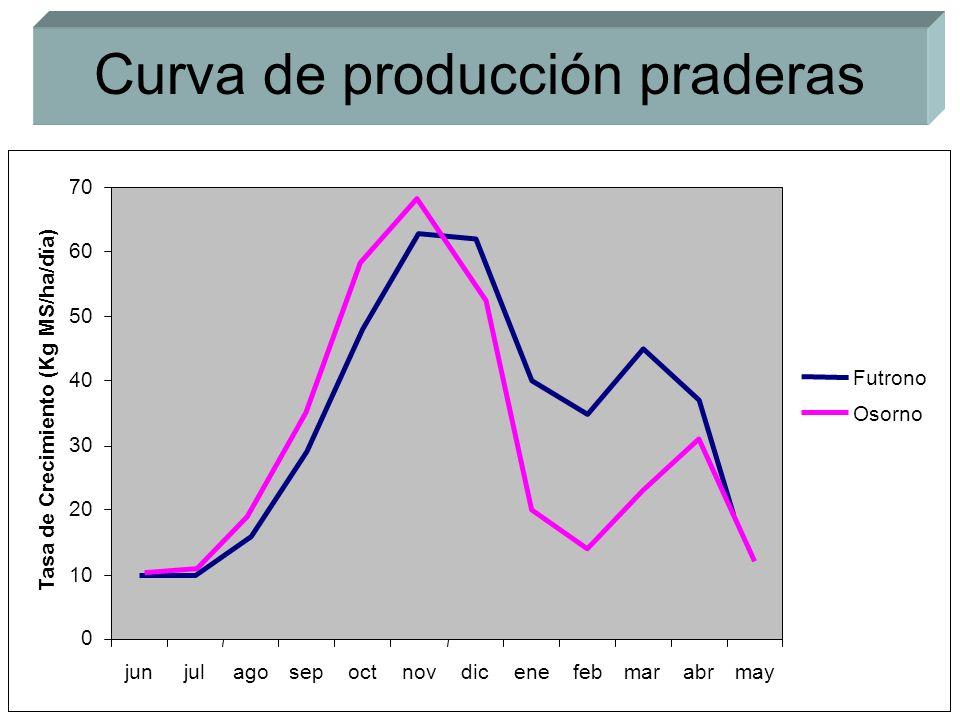 Curva de producción praderas