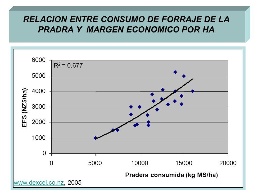 RELACION ENTRE CONSUMO DE FORRAJE DE LA PRADRA Y MARGEN ECONOMICO POR HA