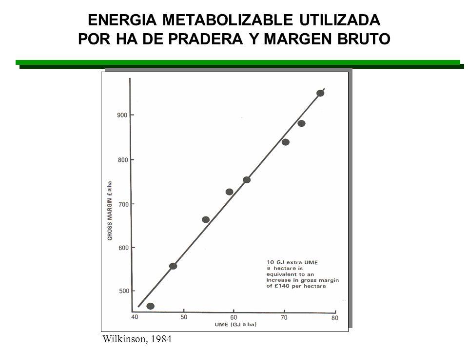 ENERGIA METABOLIZABLE UTILIZADA POR HA DE PRADERA Y MARGEN BRUTO