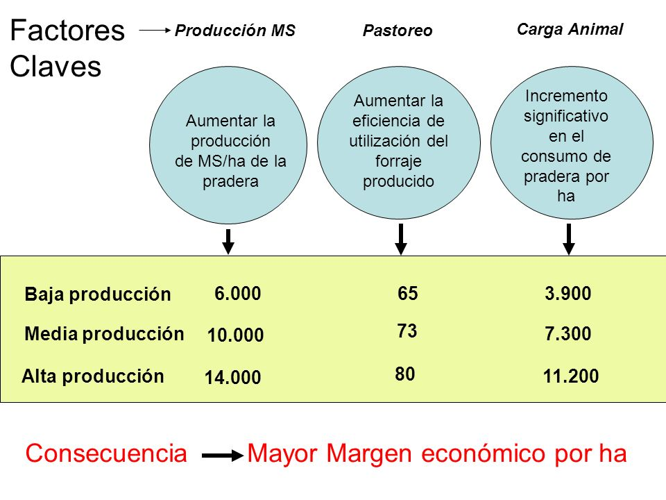 Factores Claves Consecuencia Mayor Margen económico por ha