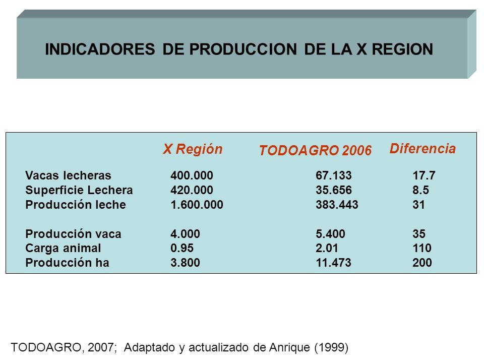 INDICADORES DE PRODUCCION DE LA X REGION