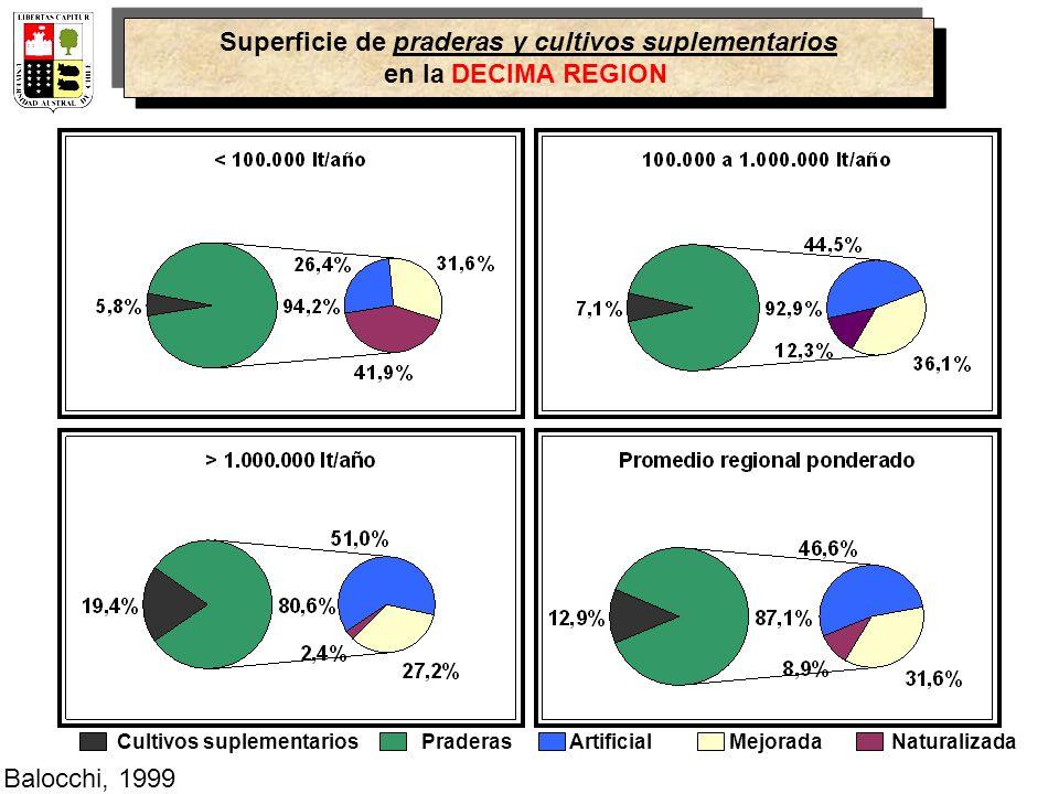 Superficie de praderas y cultivos suplementarios