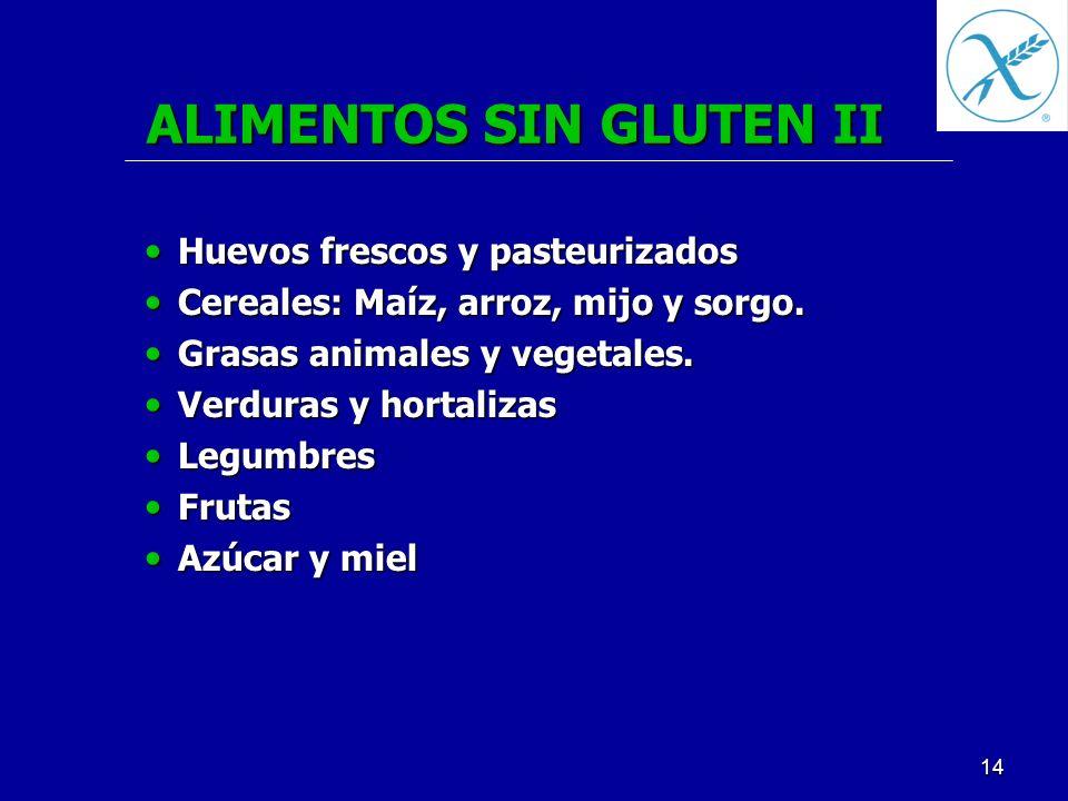 ALIMENTOS SIN GLUTEN II
