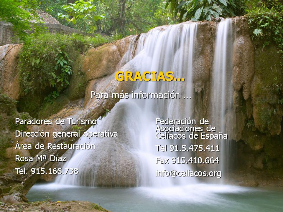 GRACIAS... Para más información ... Paradores de Turismo