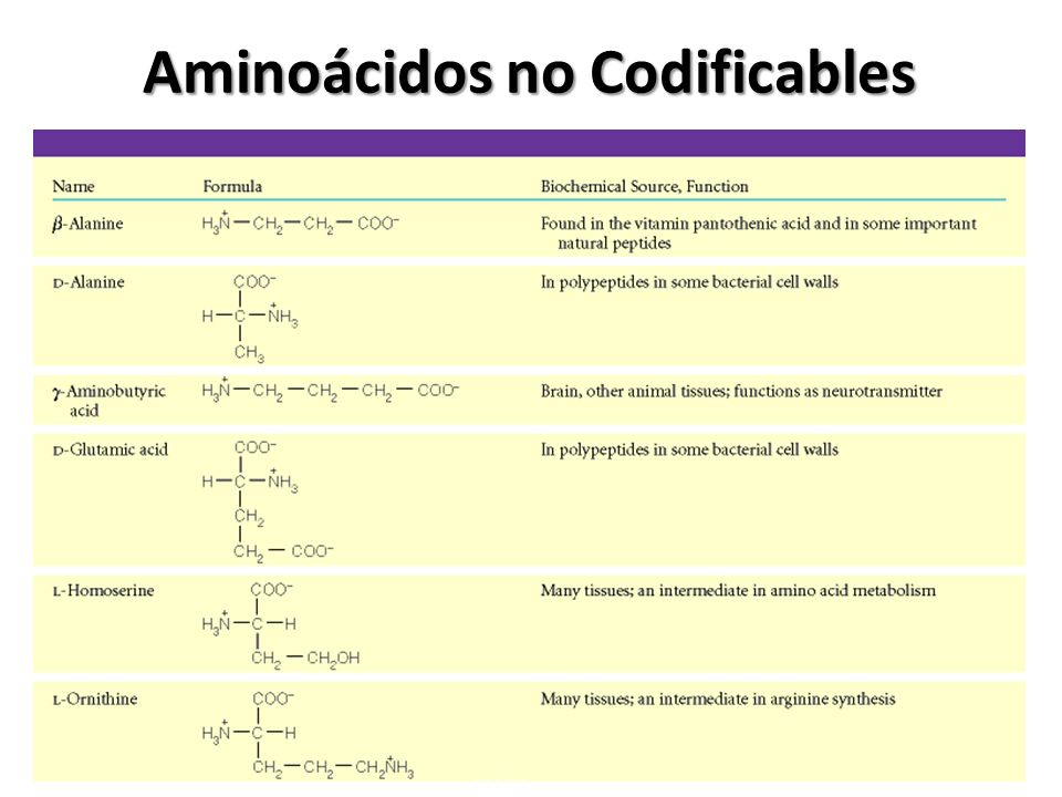 Aminoácidos no Codificables
