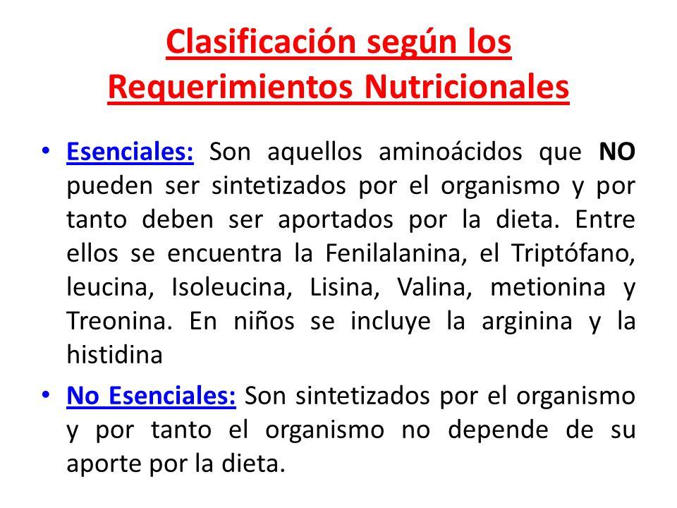 Clasificación según los Requerimientos Nutricionales