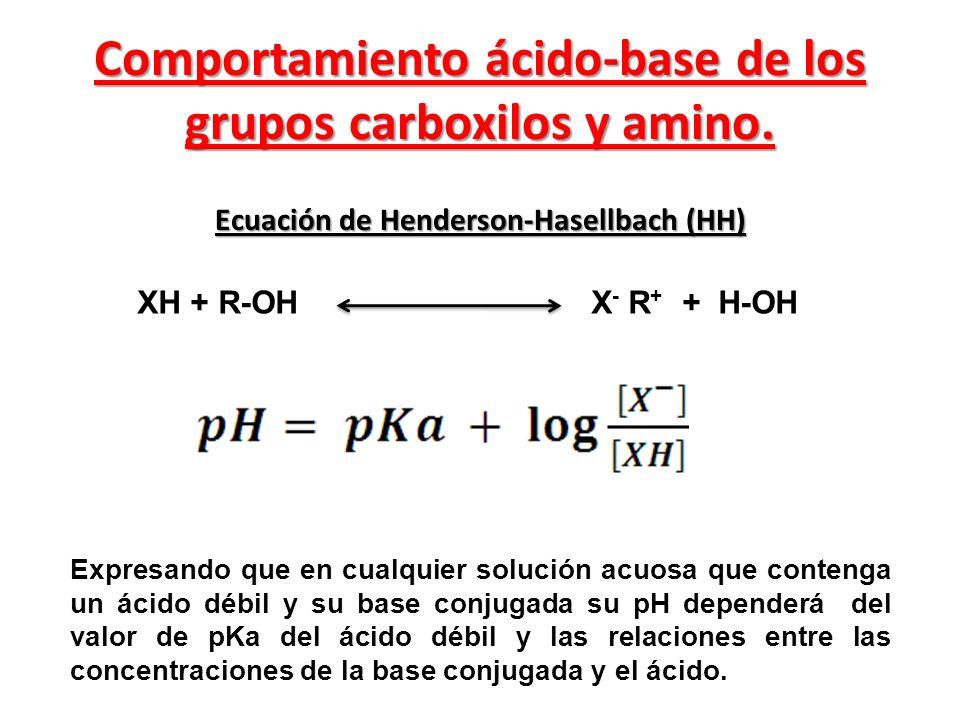 Comportamiento ácido-base de los grupos carboxilos y amino.