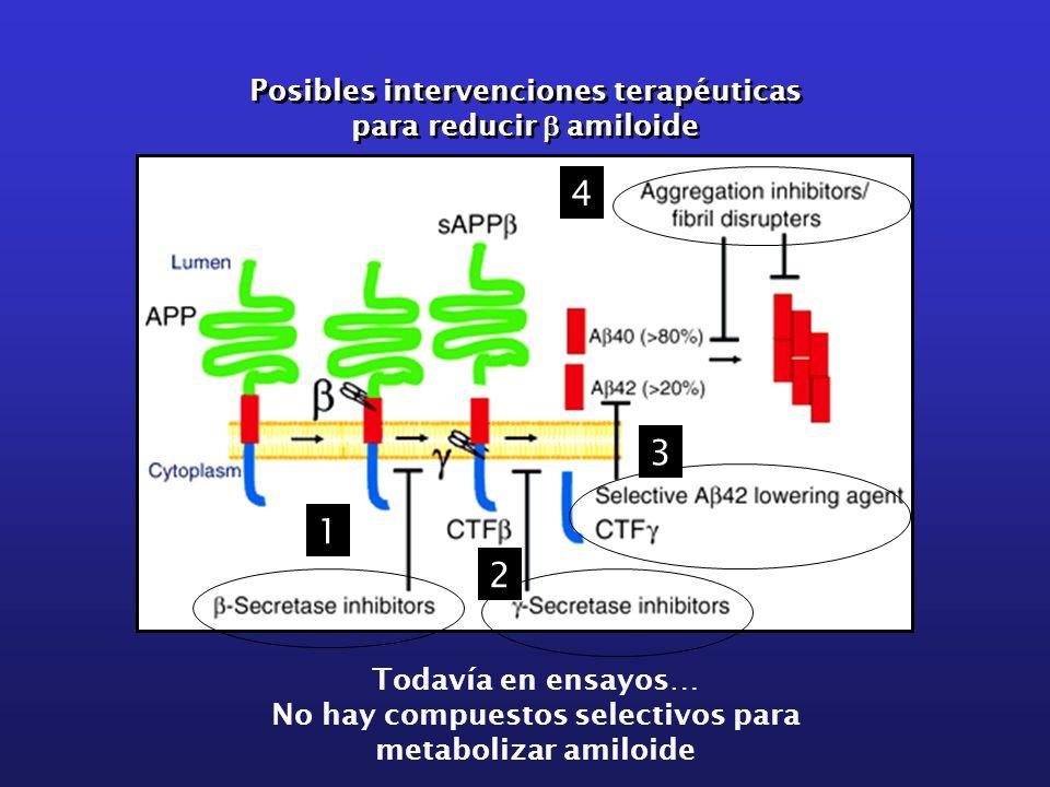 4 3 1 2 Posibles intervenciones terapéuticas para reducir b amiloide