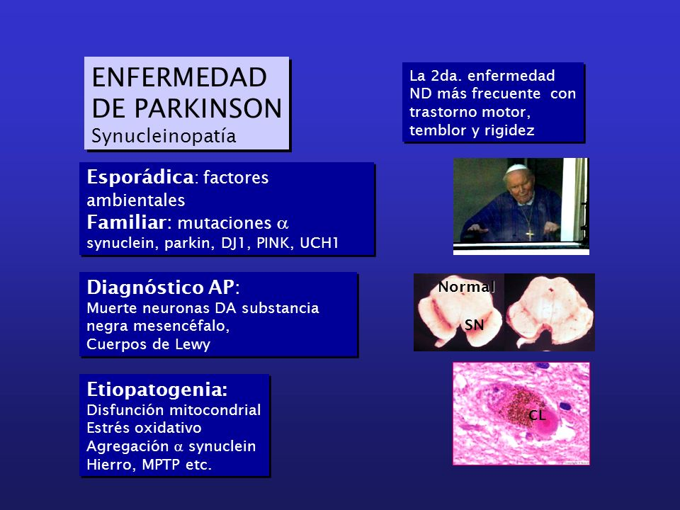 ENFERMEDAD DE PARKINSON Synucleinopatía