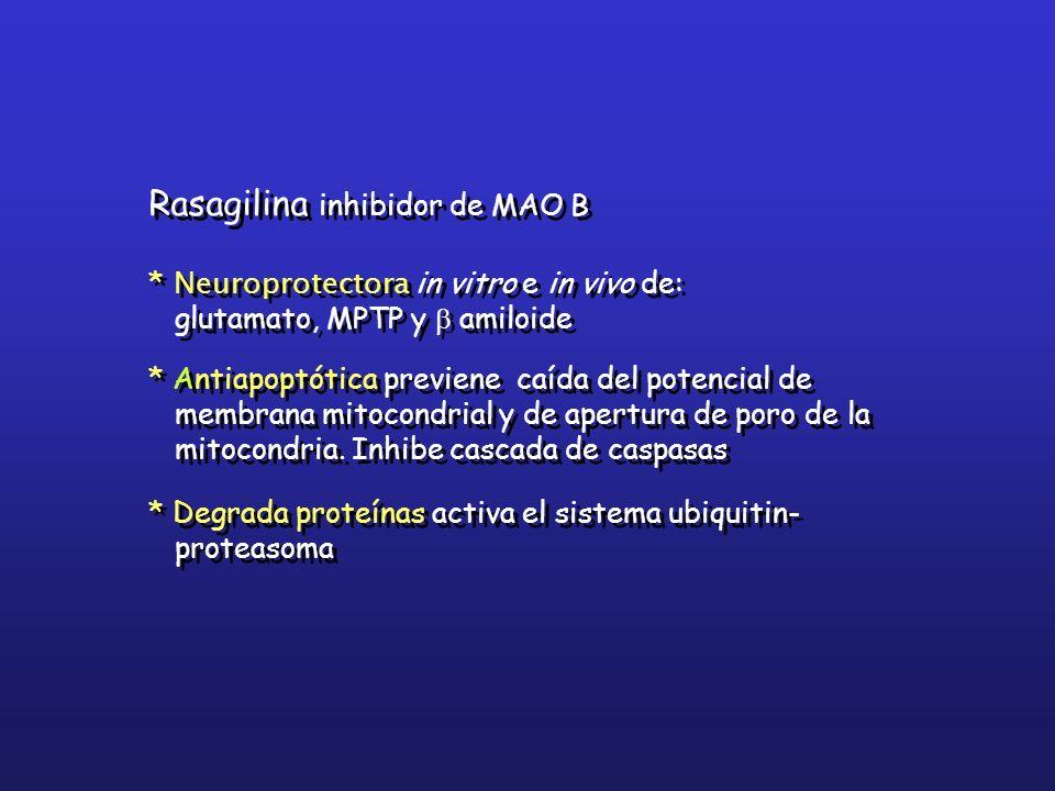 Rasagilina inhibidor de MAO B
