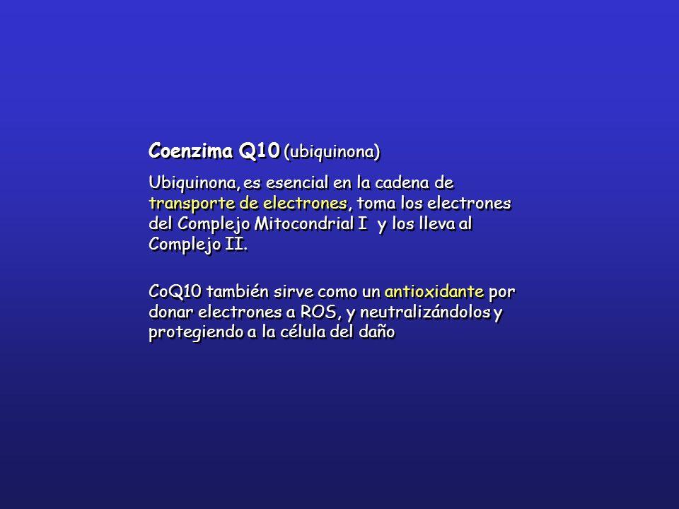 Coenzima Q10 (ubiquinona)