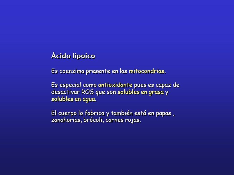 Ácido lipoico Es coenzima presente en las mitocondrias.