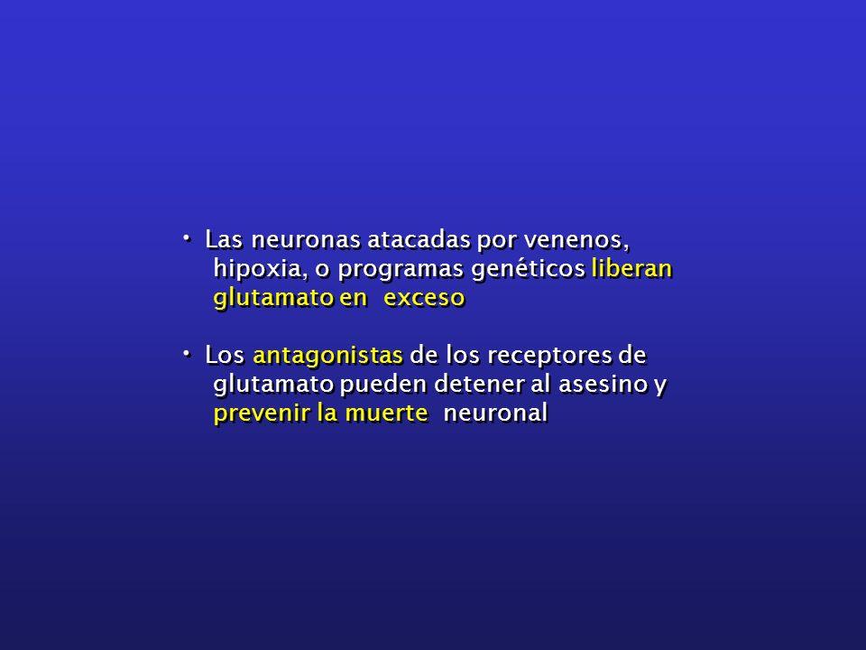 Las neuronas atacadas por venenos,