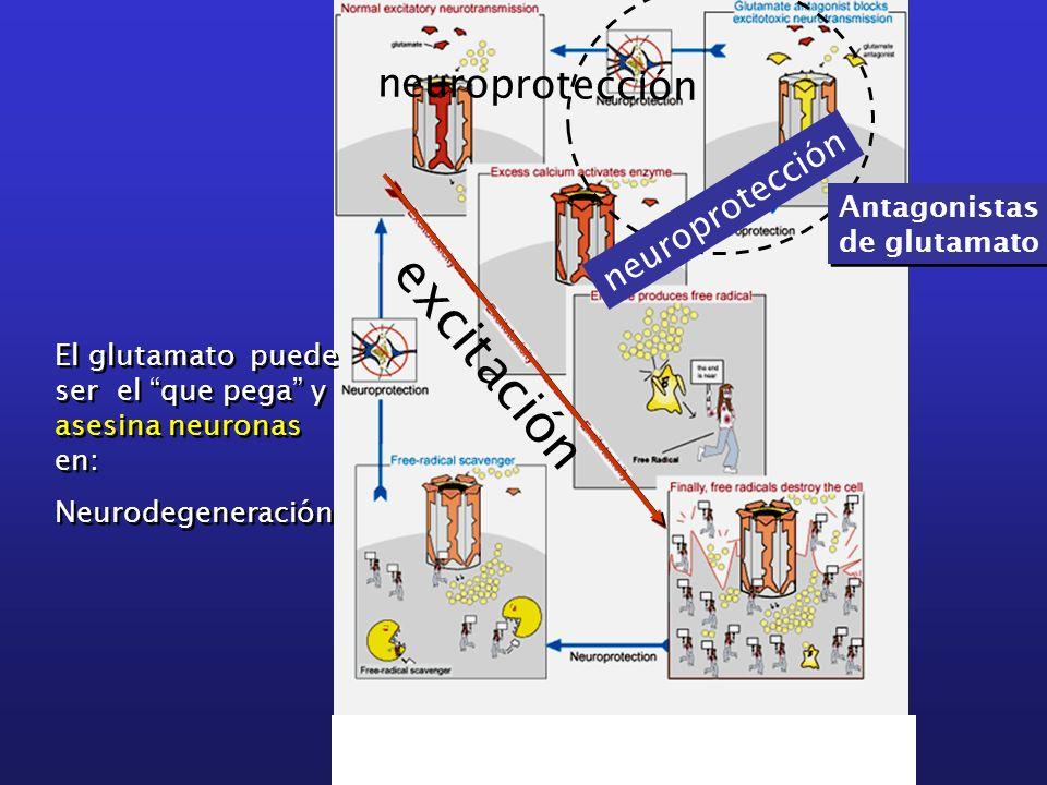 excitación neuroprotección neuroprotección Antagonistas de glutamato