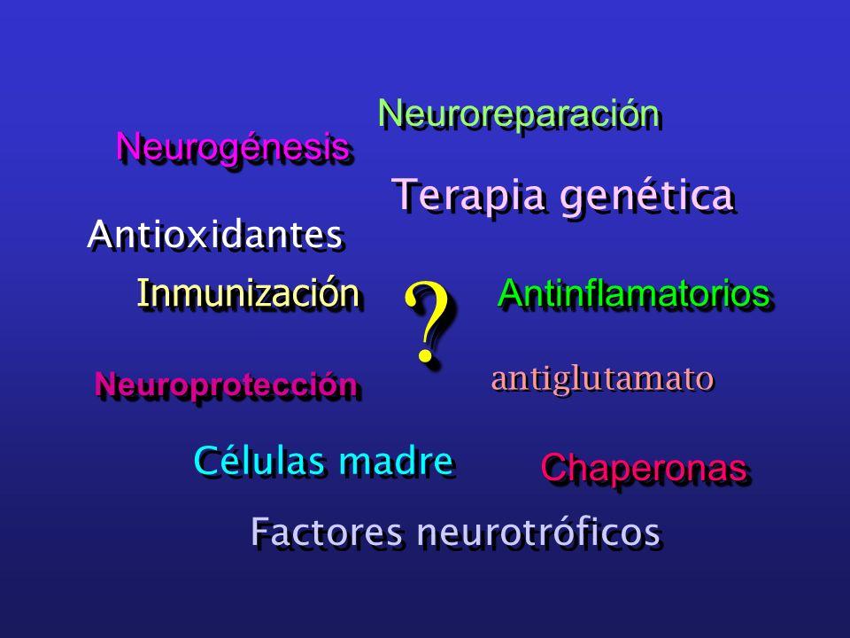 Terapia genética Neuroreparación Neurogénesis Antioxidantes