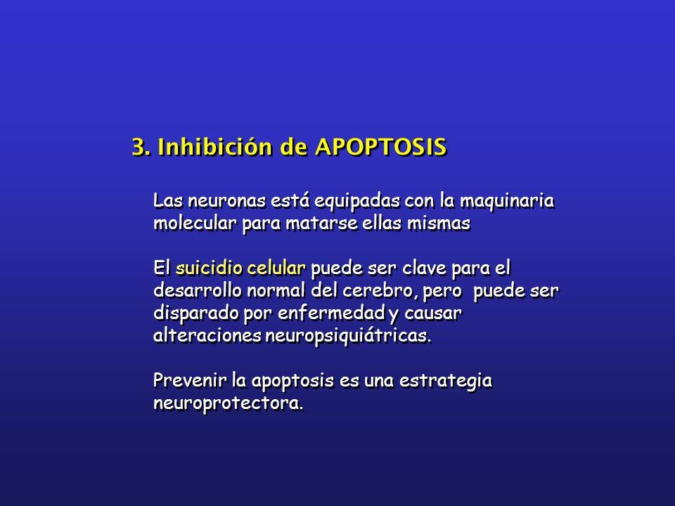 3. Inhibición de APOPTOSIS