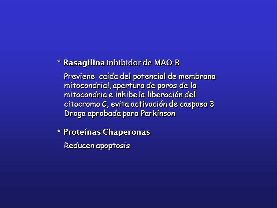 * Rasagilina inhibidor de MAO-B