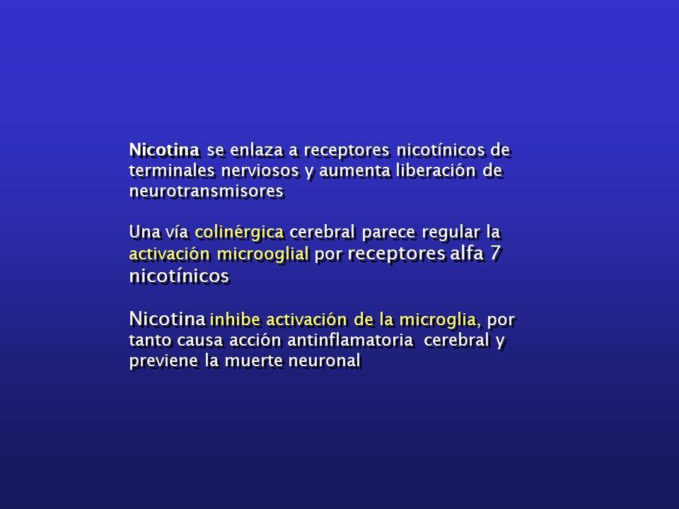 Nicotina se enlaza a receptores nicotínicos de terminales nerviosos y aumenta liberación de neurotransmisores