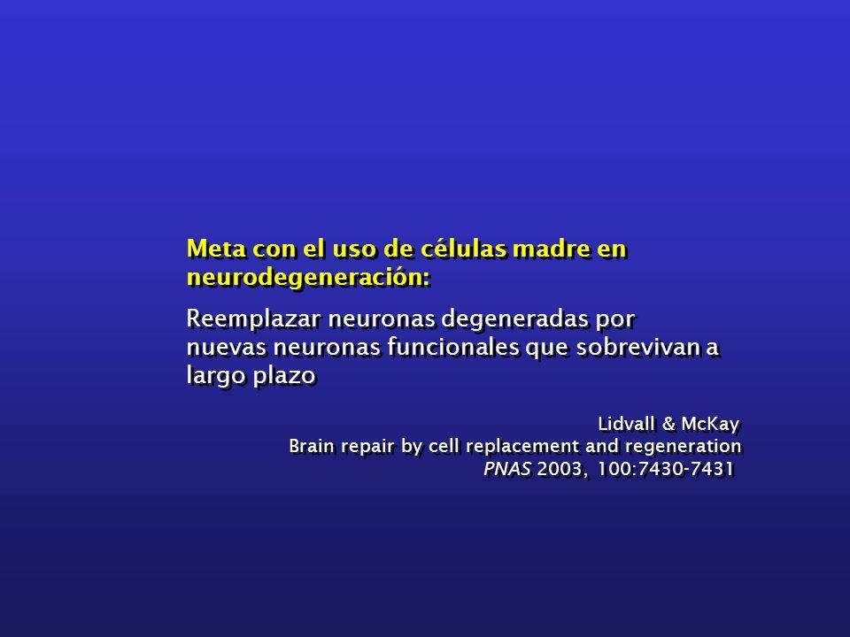 Meta con el uso de células madre en neurodegeneración: