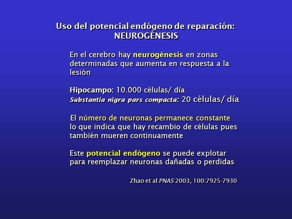 Uso del potencial endógeno de reparación: