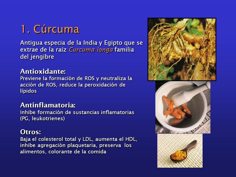 1. Cúrcuma Antioxidante: Antinflamatoria: Otros: