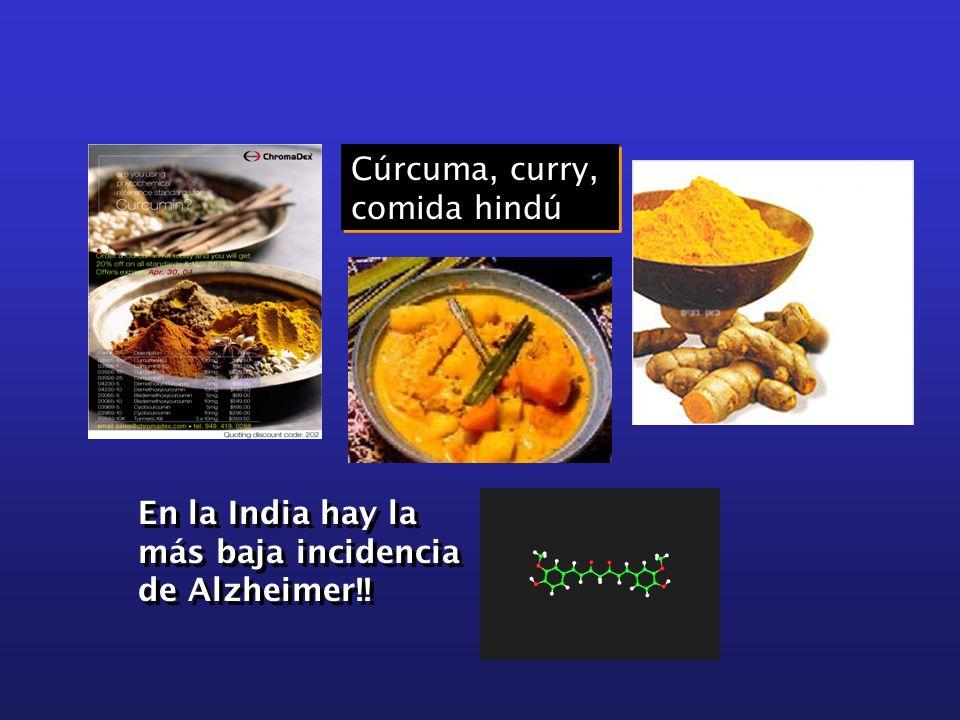 Cúrcuma, curry, comida hindú En la India hay la más baja incidencia de Alzheimer!!