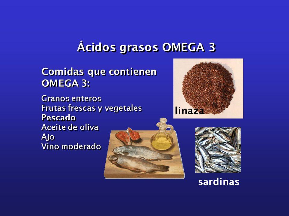 Ácidos grasos OMEGA 3 Comidas que contienen OMEGA 3: linaza sardinas