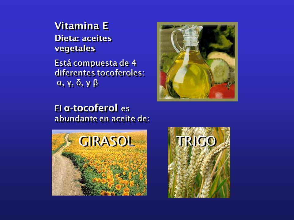 GIRASOL TRIGO Vitamina E Dieta: aceites vegetales