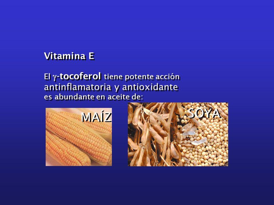 Vitamina E El g-tocoferol tiene potente acción antinflamatoria y antioxidante. es abundante en aceite de: