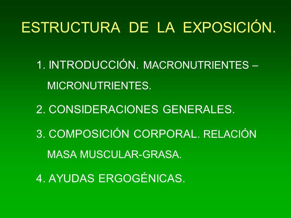 ESTRUCTURA DE LA EXPOSICIÓN.