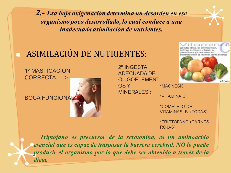 ASIMILACIÓN DE NUTRIENTES: