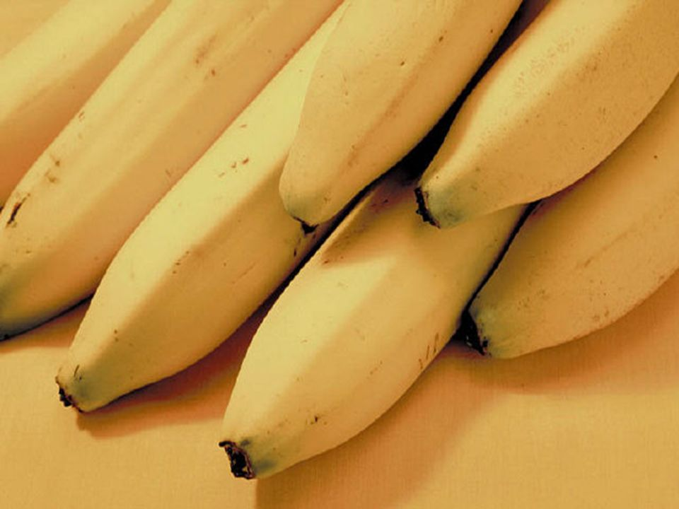 sacarosa, fructuosa y glucosa,