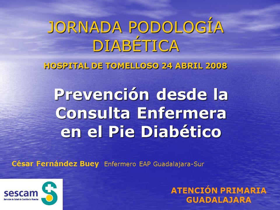 JORNADA PODOLOGÍA DIABÉTICA HOSPITAL DE TOMELLOSO 24 ABRIL 2008