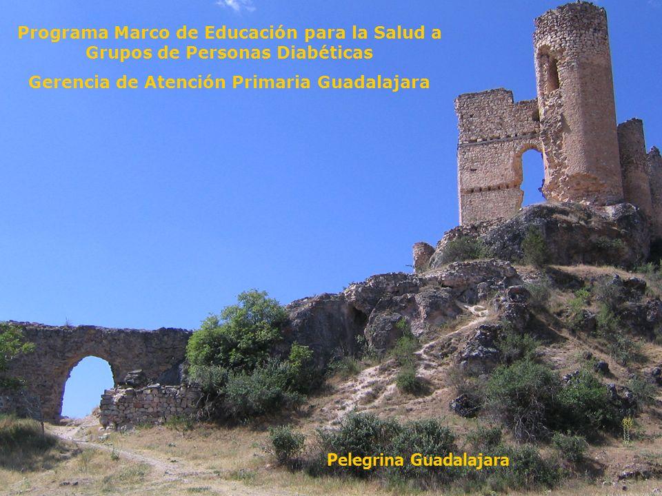 Gerencia de Atención Primaria Guadalajara