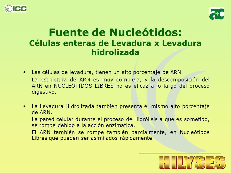 Fuente de Nucleótidos: Células enteras de Levadura x Levadura hidrolizada