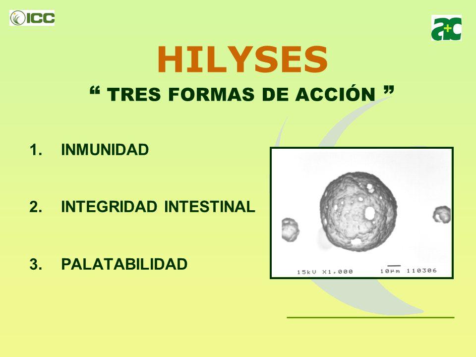 HILYSES TRES FORMAS DE ACCIÓN