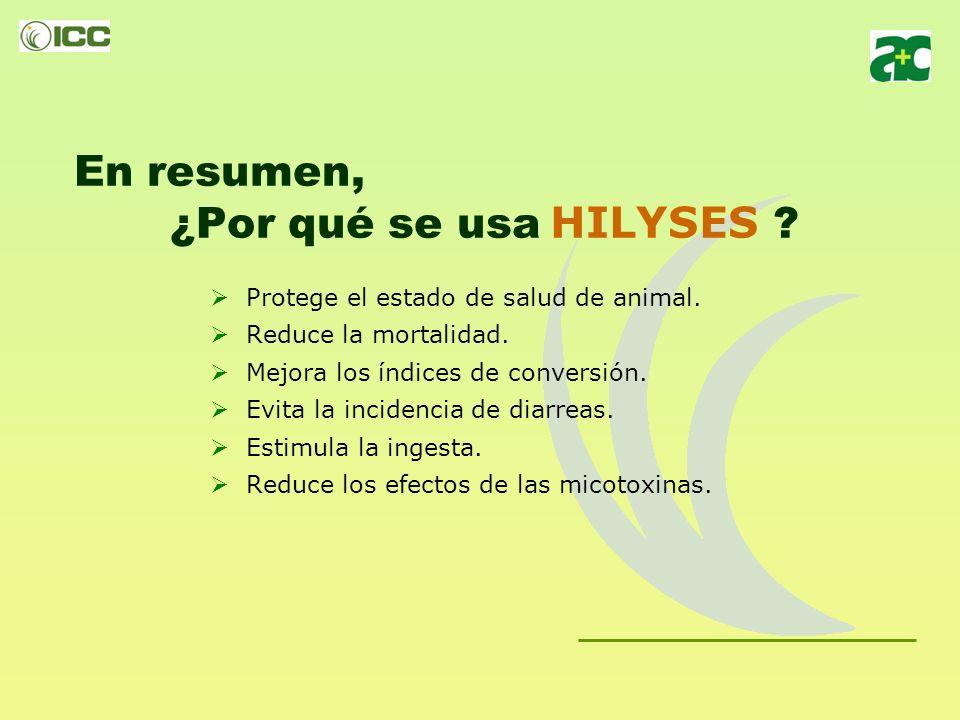 En resumen, ¿Por qué se usa HILYSES