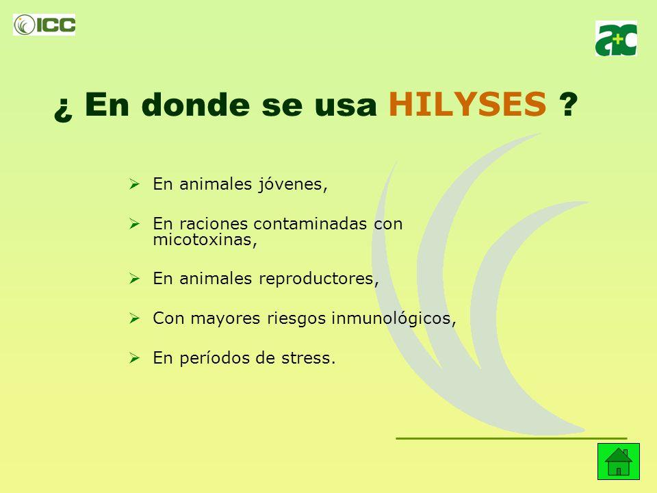¿ En donde se usa HILYSES