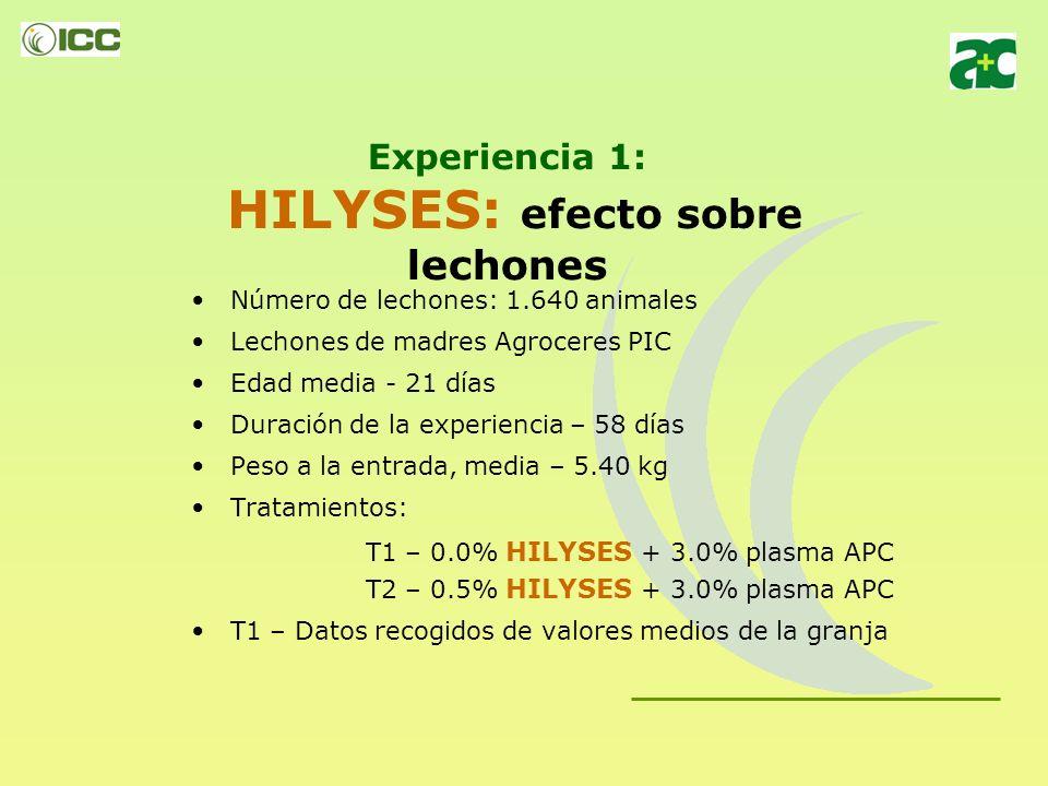 Experiencia 1: HILYSES: efecto sobre lechones