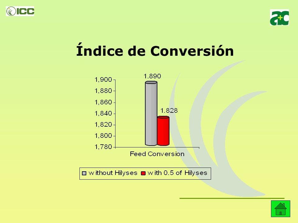 Índice de Conversión