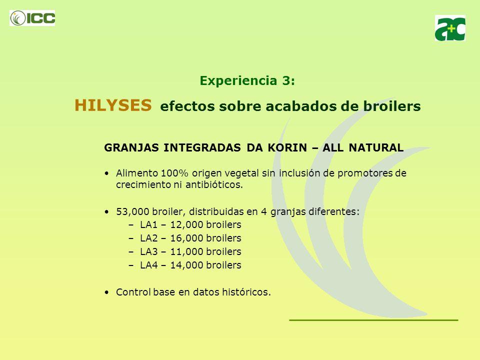 Experiencia 3: HILYSES efectos sobre acabados de broilers