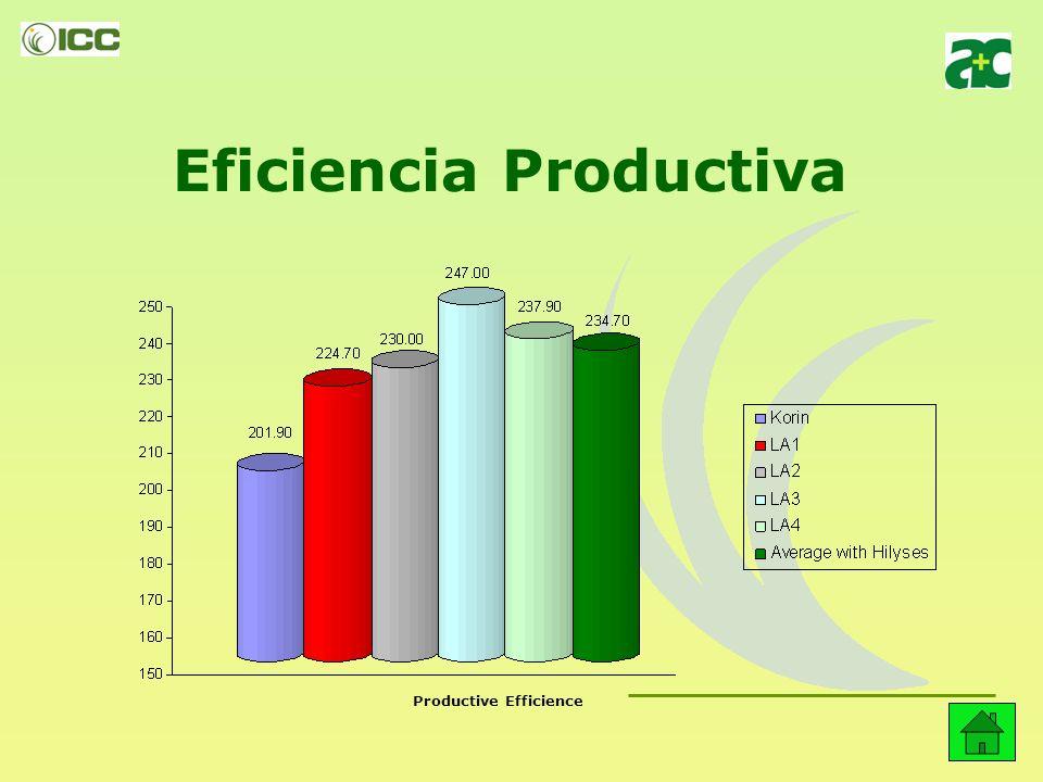 Eficiencia Productiva