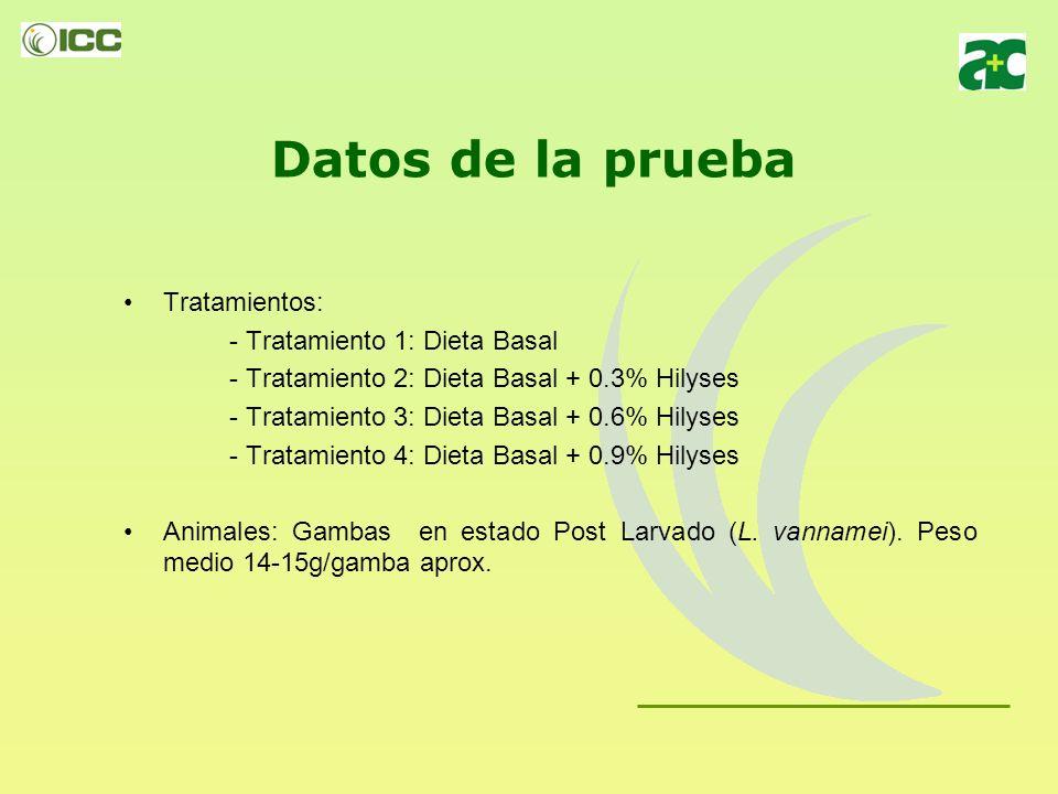 Datos de la prueba Tratamientos: - Tratamiento 1: Dieta Basal