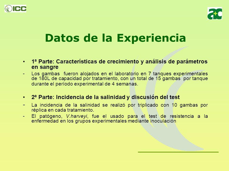 Datos de la Experiencia