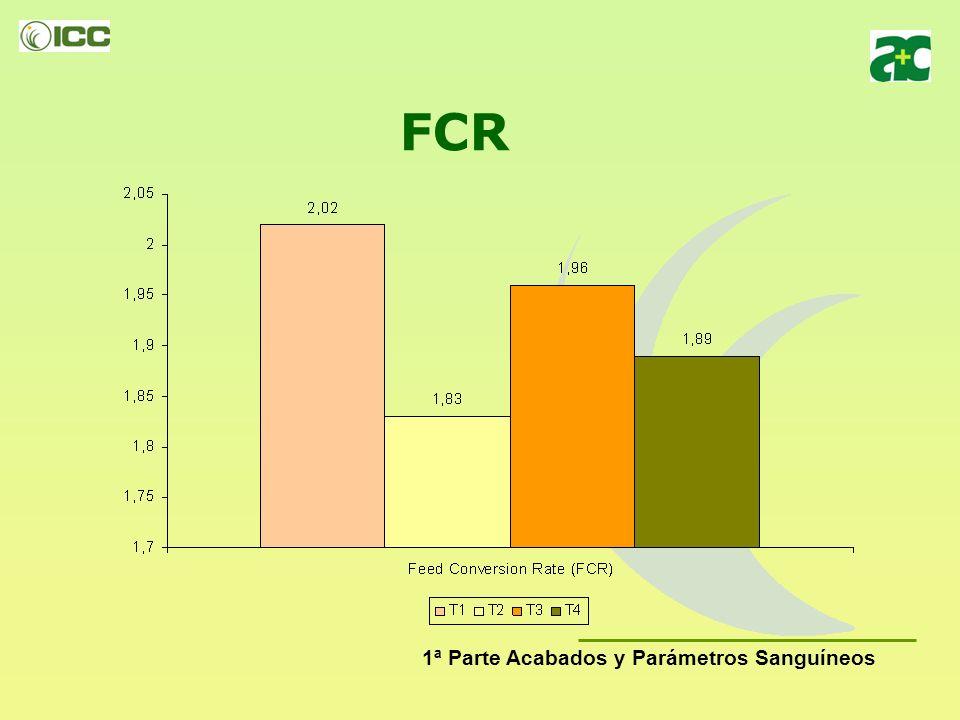 FCR 1ª Parte Acabados y Parámetros Sanguíneos