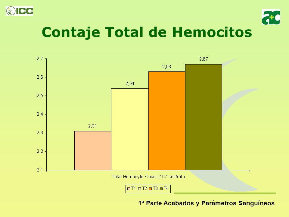 Contaje Total de Hemocitos