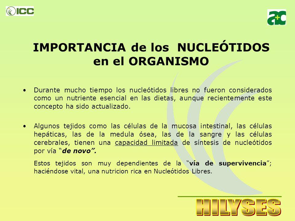 IMPORTANCIA de los NUCLEÓTIDOS en el ORGANISMO