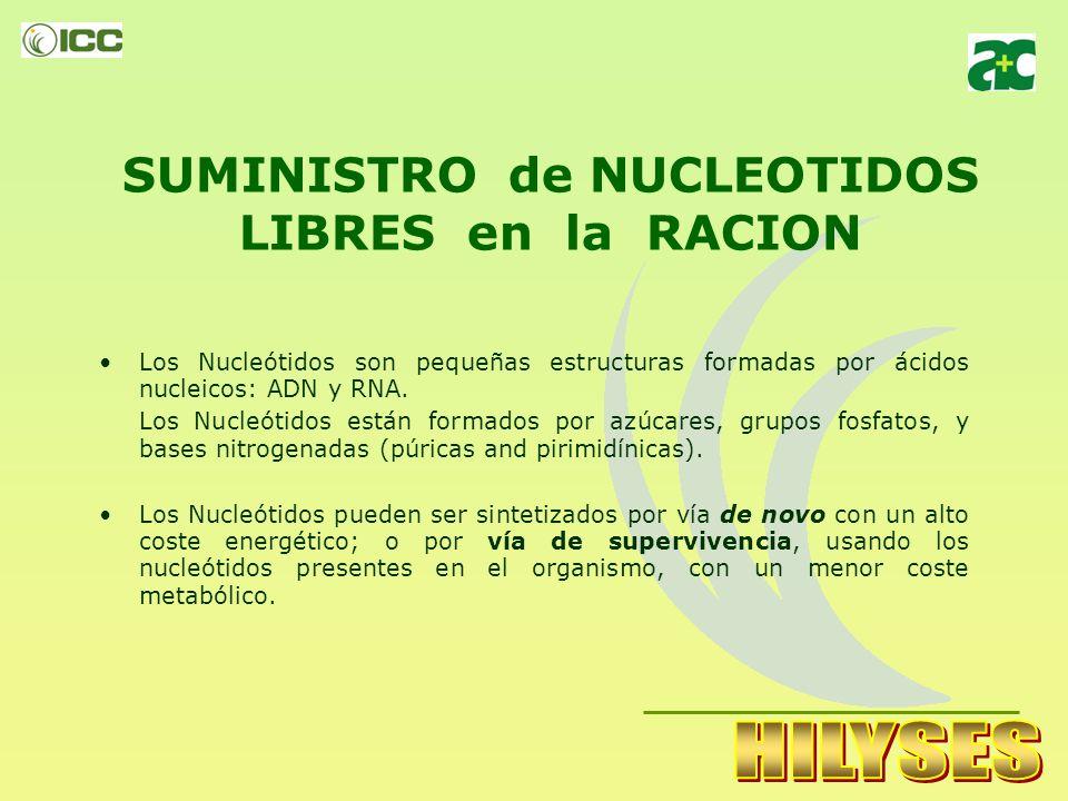 SUMINISTRO de NUCLEOTIDOS LIBRES en la RACION
