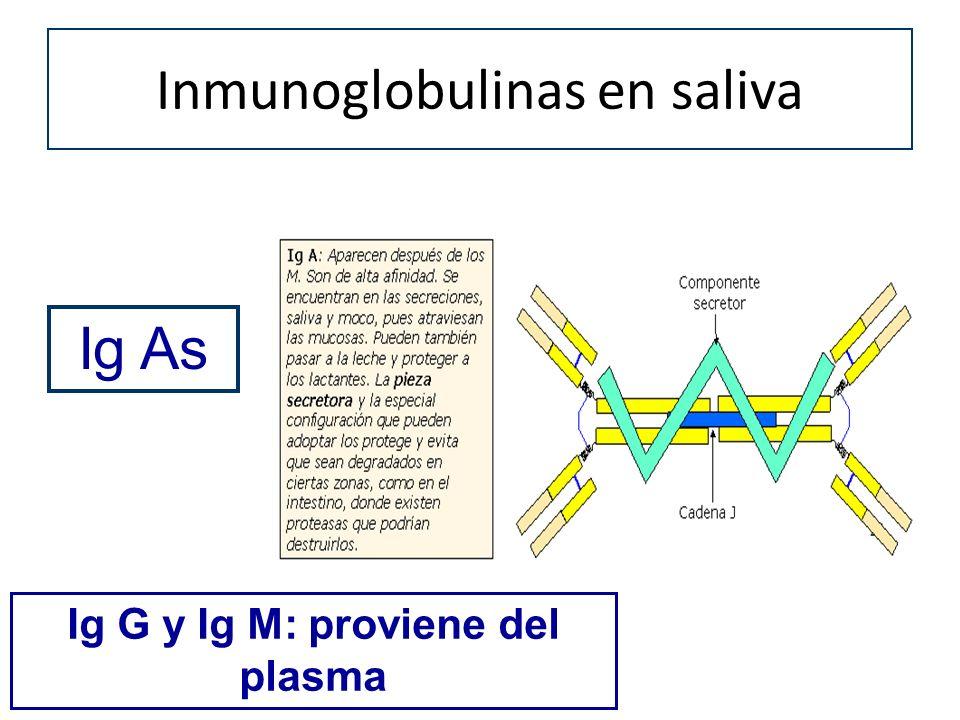Inmunoglobulinas en saliva