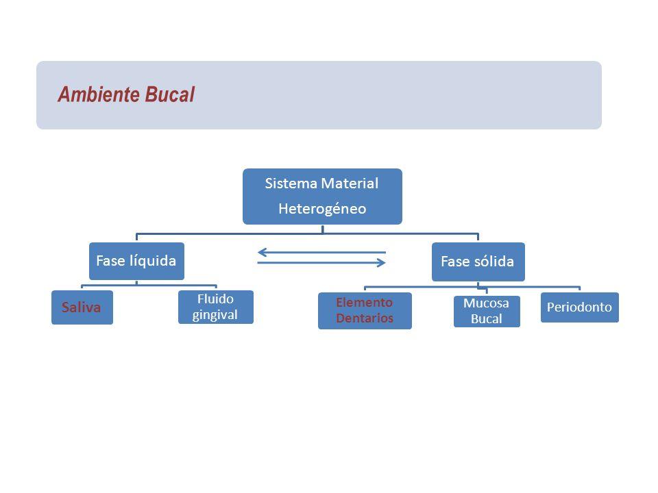 Ambiente Bucal Sistema Material Heterogéneo Fase líquida Saliva